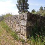 Ruta de la pedra seca i tast d'oli, experiència oleoturística