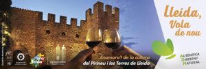 Faldó publicitat Ara Lleida Cultural Campanya estiu 2021