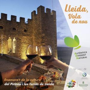 Mòdul publicitat campanya cultural estiu Ara Lleida 2021