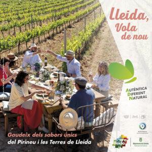 Mòdul publicitat campanya gastronomia estiu Ara Lleida 2021